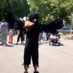 Krkavec - čierny vták